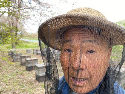 養蜂部のムードメーカー