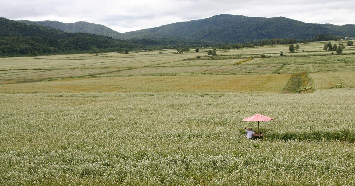 毎年恒例ミツバチ大移動! ─北海道編─ 第二弾